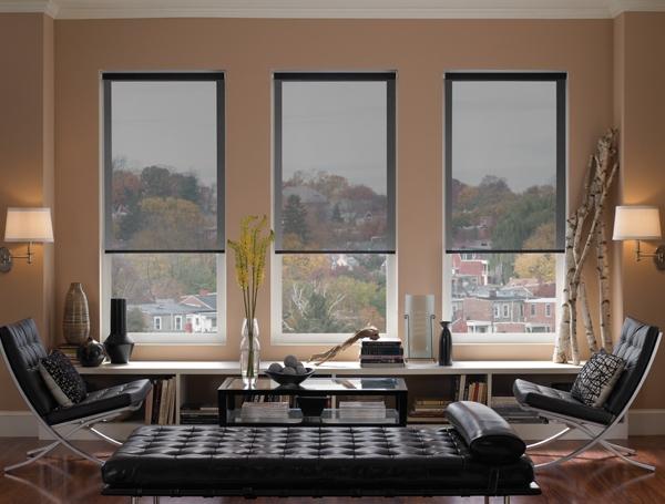 Interior Solar Screens (Fixed) 1